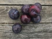 Shop extras plums