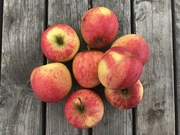 Shop extras apples 1kg